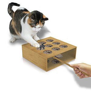 This whack-a-mole game that opens up a whole new way to play with your cat.