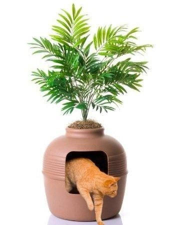 This amazing place to hide a cat litter box.