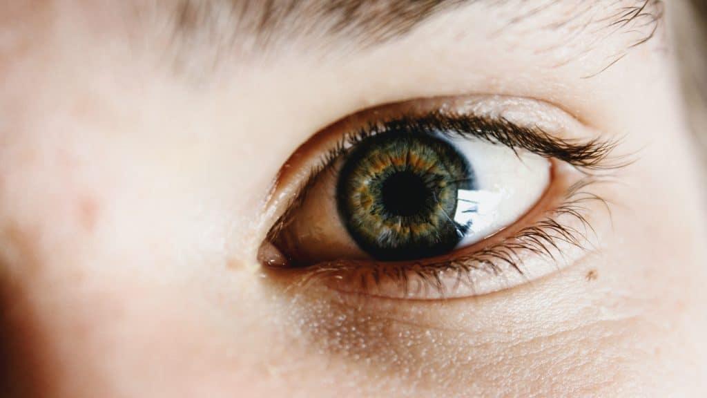 memilih eye cream